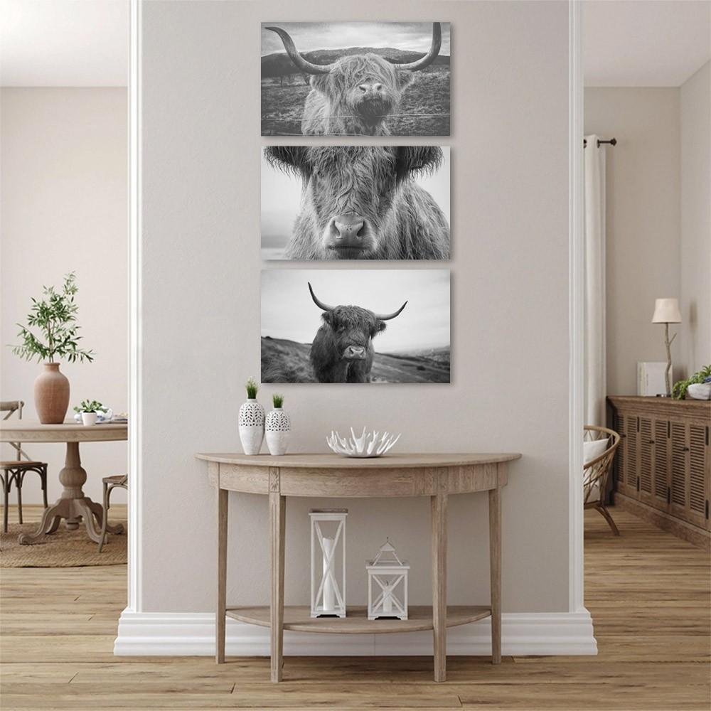 Kit Quadros Decorativos Animal Preto e Branco