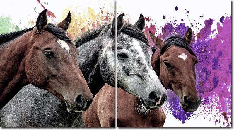 Quadro Decorativo 3 Cavalos com fundo Colorido Para Sala 2 peças