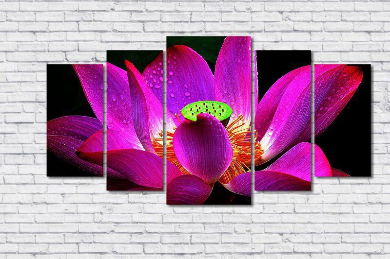 Quadro Decorativo Flor de Lótus Colorida 5 peças