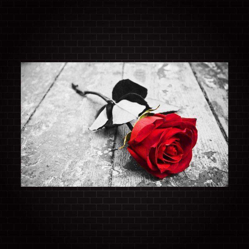 Quadro Decorativo Flor Rosa Vermelha 1 peça