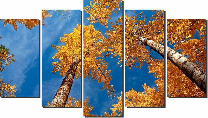 Quadros Decorativos Arvores Amarela 5 peças