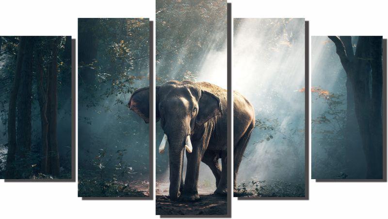 Quadros Decorativos Elefante Africano para Sala 5 peças