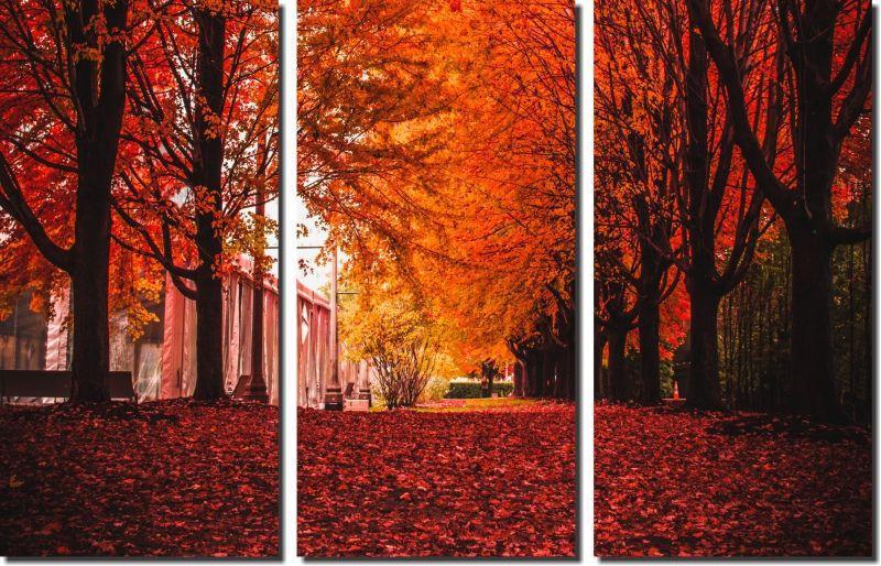 Quadros Decorativos Paisagem Outono 3 peças