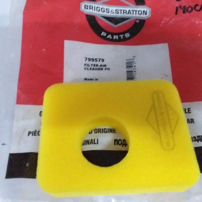 Filtro Ar Motores Briggs Stratton 5 HP 799579