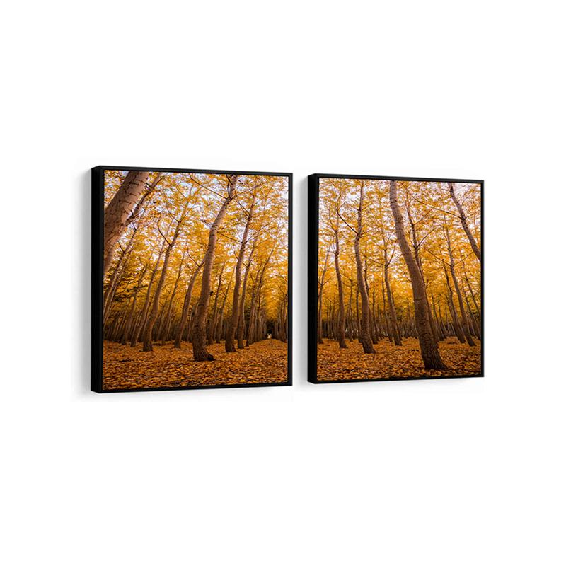 Conjunto 2 Quadros Decorativos Árvore Outono