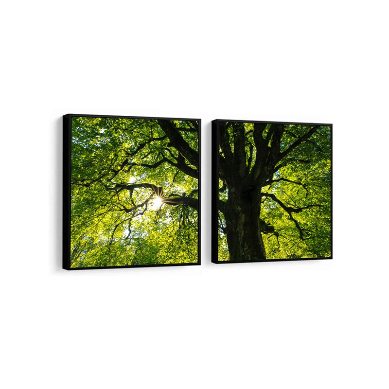 Conjunto 2 Quadros Decorativos Ávores no Verão