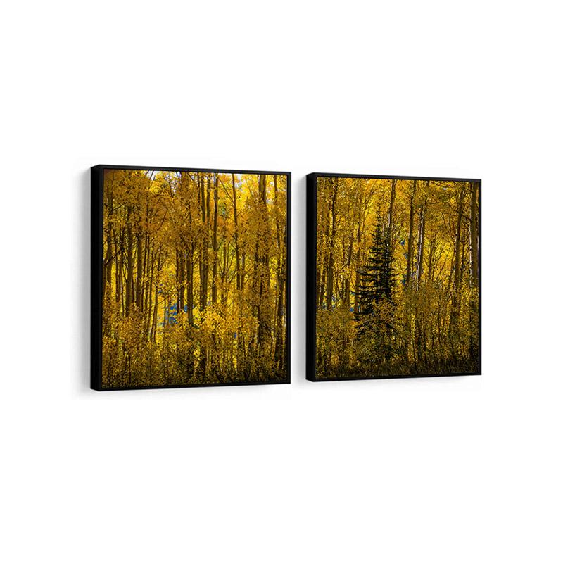 Conjunto 2 Quadros Decorativos Floresta