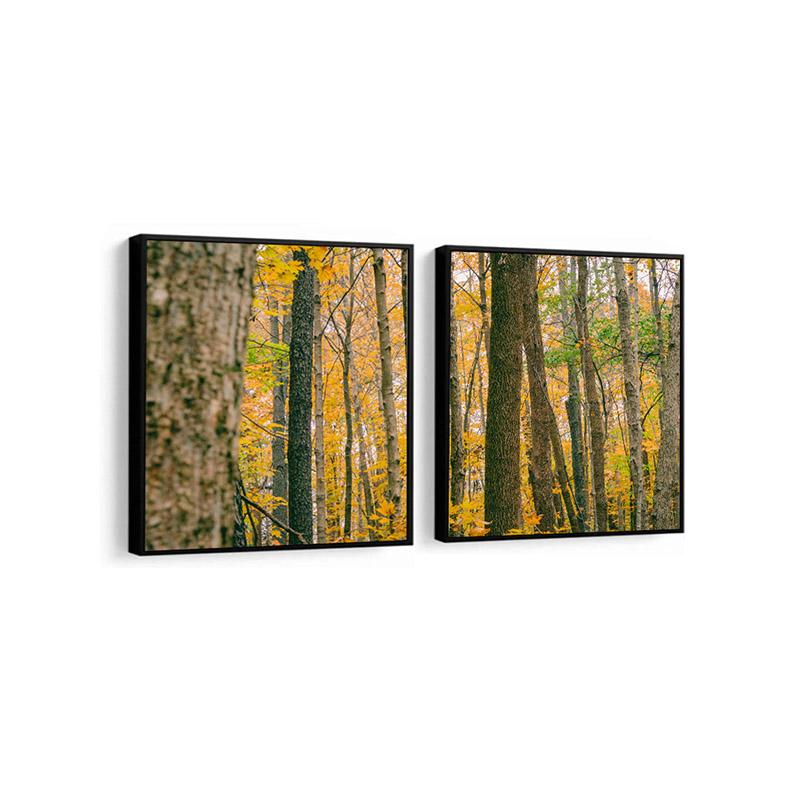 Conjunto 2 Quadros Decorativos Floresta Outono