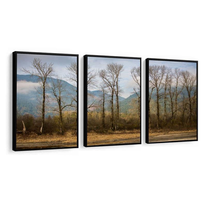 Conjunto 3 Quadros Decorativos Abstrato Árvores E Montanha
