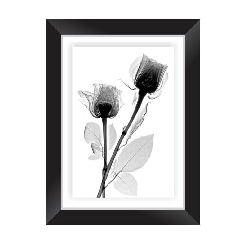 Quadro Decorativo com Moldura em Madeira Maciça e Vidro Black Rose P013