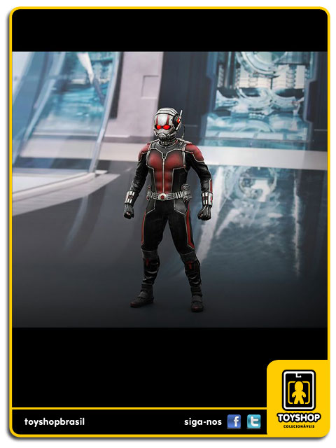Ant-Man: Ant-Man 1/6 - Hot Toys