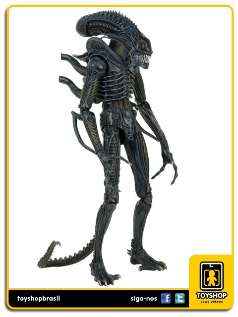 Alien Movie 1986 Alien Xenomorph Warrior 1/4  Neca