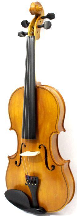 Violino 4/4 Custom com Estojo ARCO e Breu