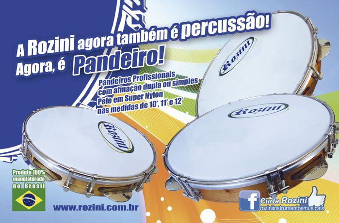 Pandeiro Rozini Profissional 11 Tarraxa Simples Pele Branca Porosa e ARO em Madeira RPP11AS