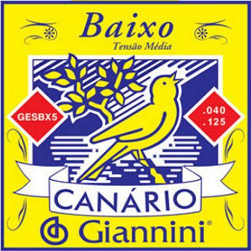 Encordoamento para Contra Baixo Canário Giannini 5 Cordas .040 - GESBX5 - Pacote com 2 Encordoamentos