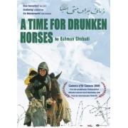 Tempo De Embebedar Cavalos (2000)