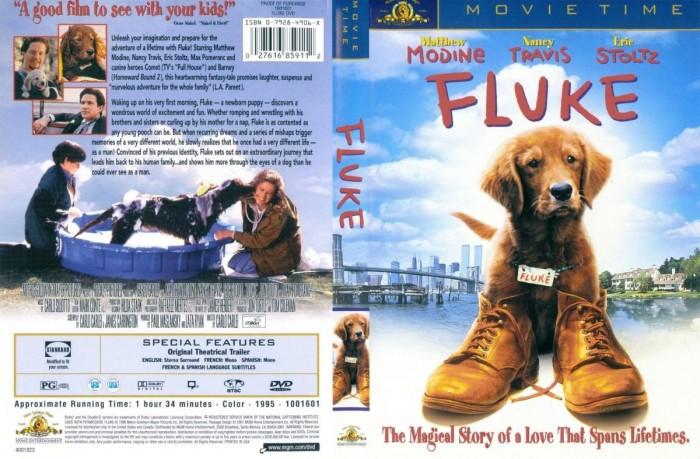 Fluke Lembranças De Outra Vida  - FILMES RAROS EM DVD