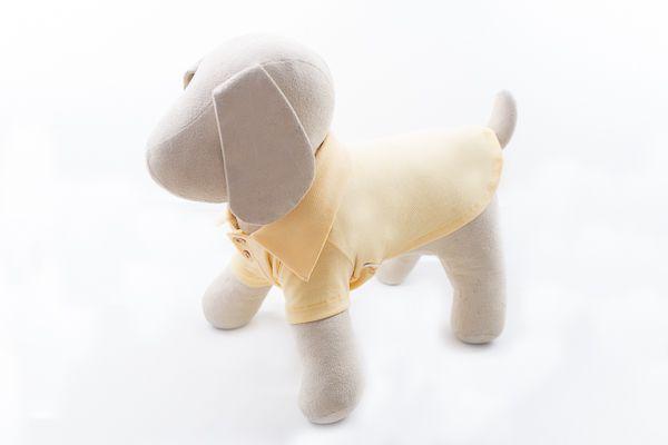 Polo Pet Amarelo