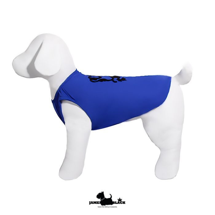 Camiseta DryFit Leon - Azul