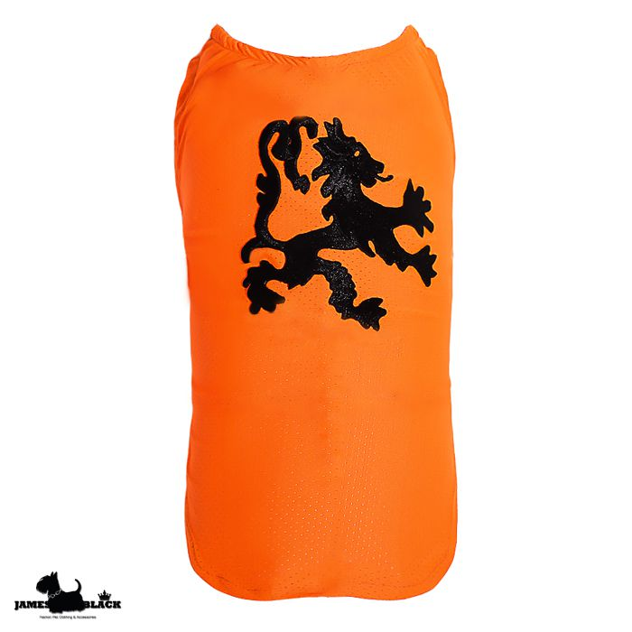 Camiseta DryFit Leon - Laranja