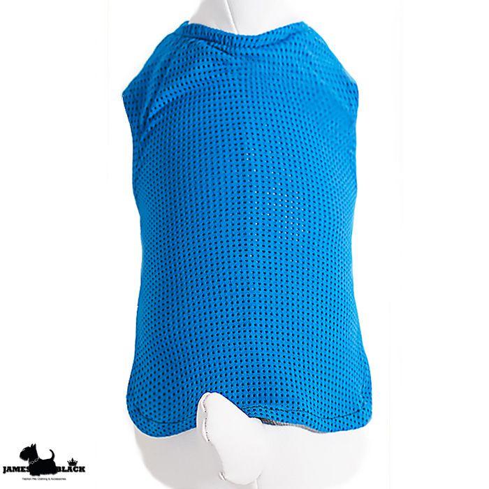 Camiseta Dryfit Foster - Azul