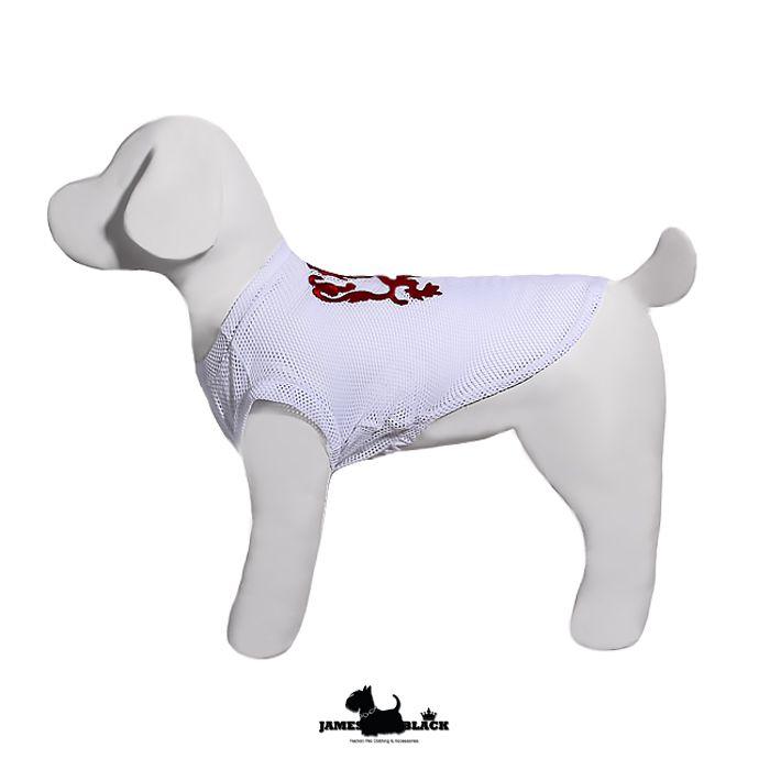 Camiseta Dryfit Foster - Branca