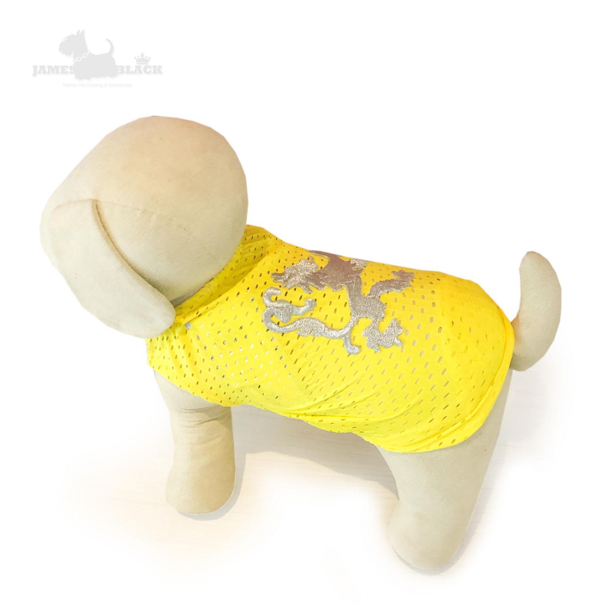 Camiseta DryFit Leon - Amarela