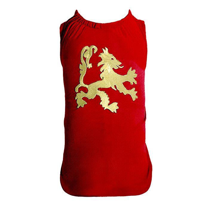 Camiseta DryFit Micro furos Leon Dourado- Bordô