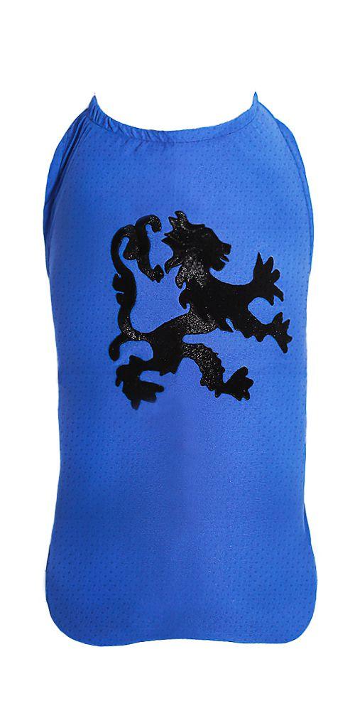 Camiseta DryFit Microfuros Leon - Azul