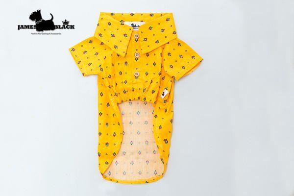 Camiseta Polo Amarela Gema com Detalhes de Florzinhas e Botões Caramelo