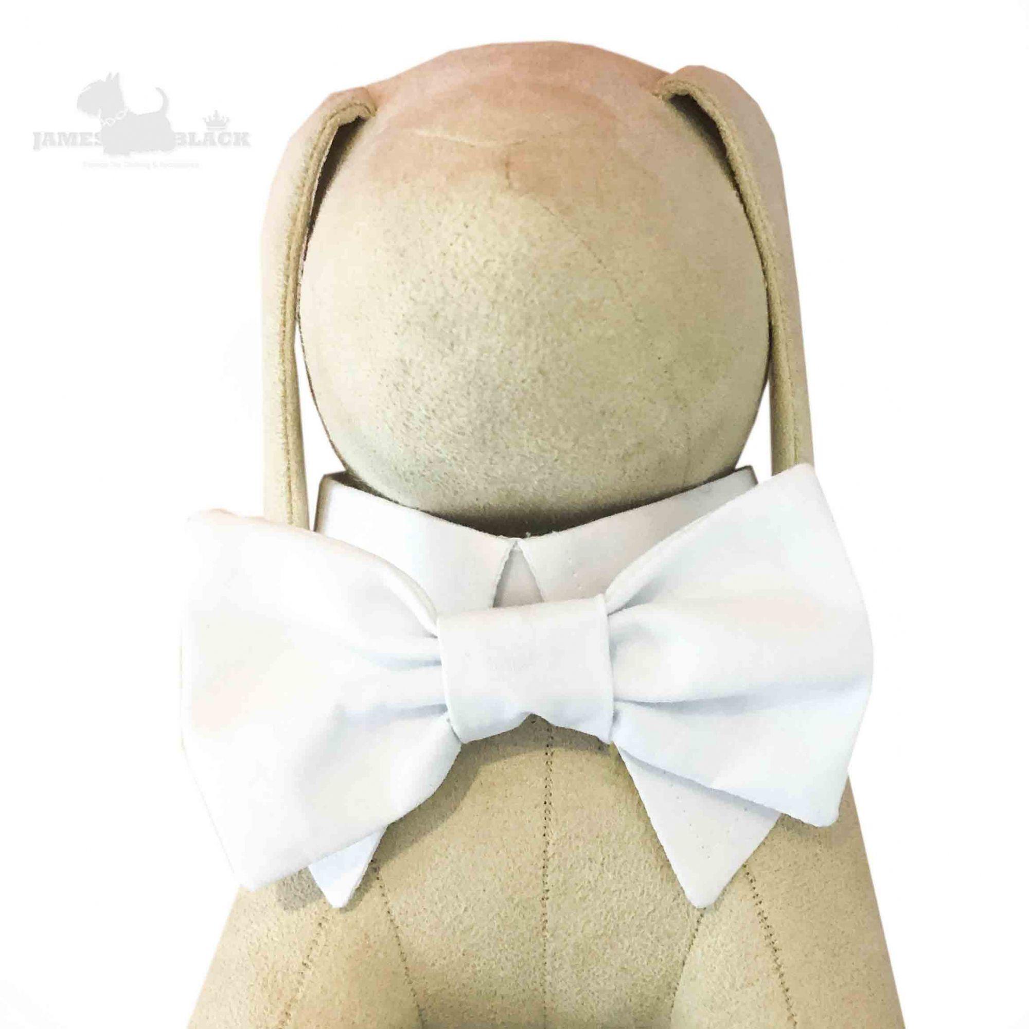 Colarinho com Gravata removível Branco