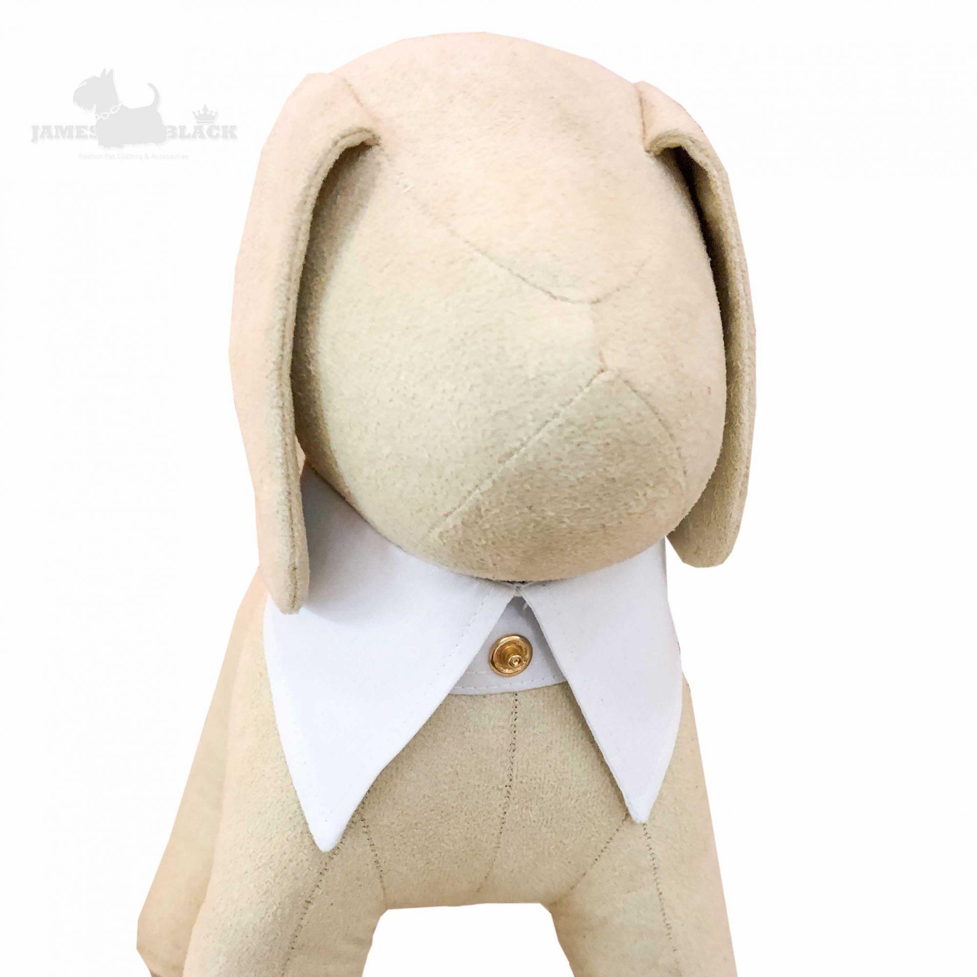 Colarinho com Gravata removível Branco com poá preto