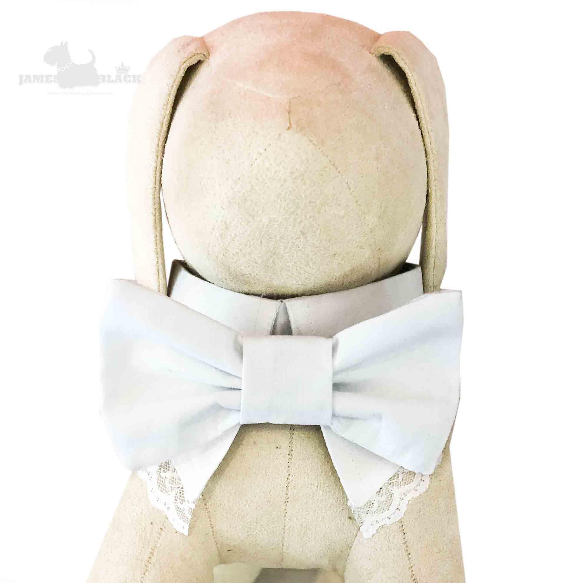 Colarinho com Gravata removível Branco  e renda branca