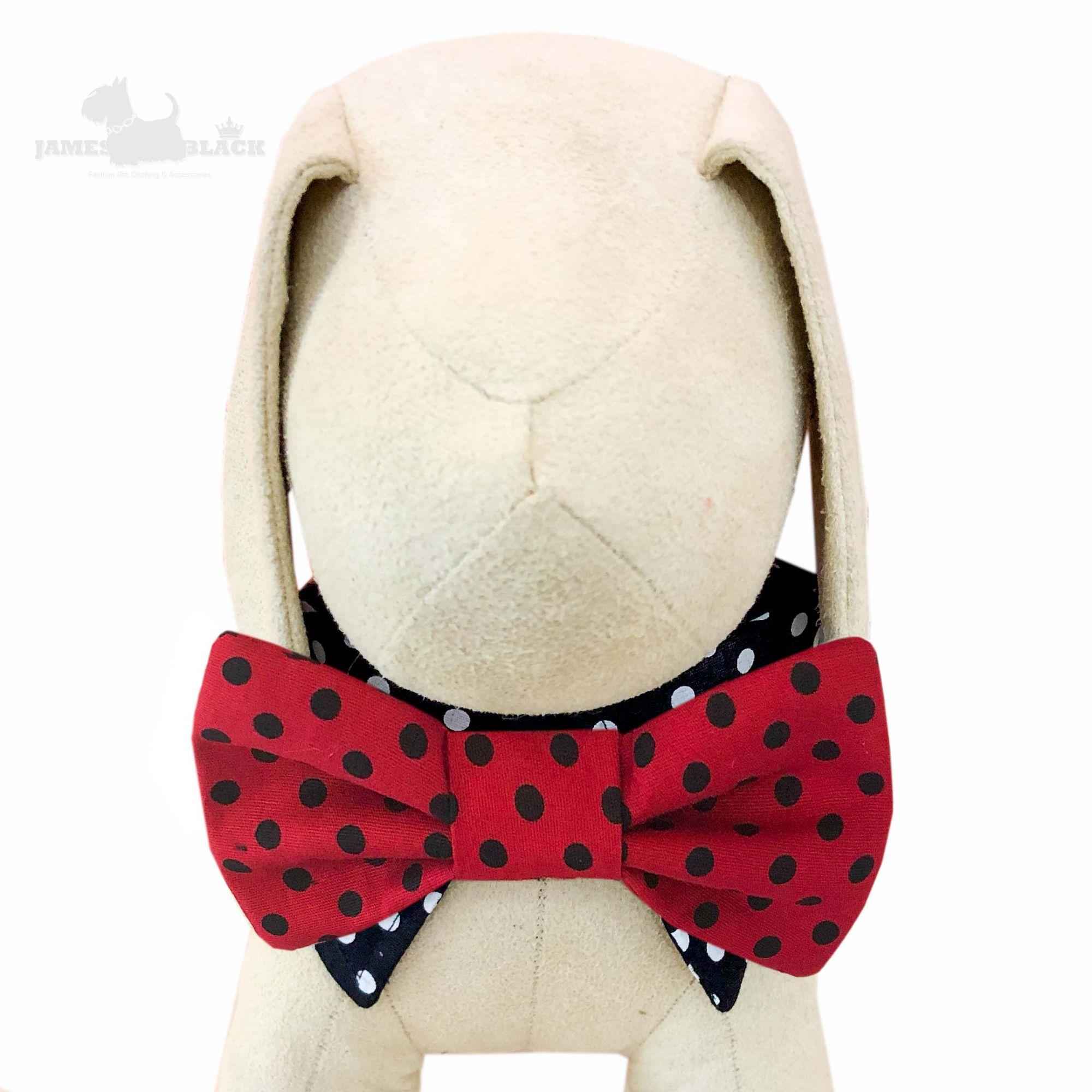 Colarinho com Gravata removível Vermelha com poá preto