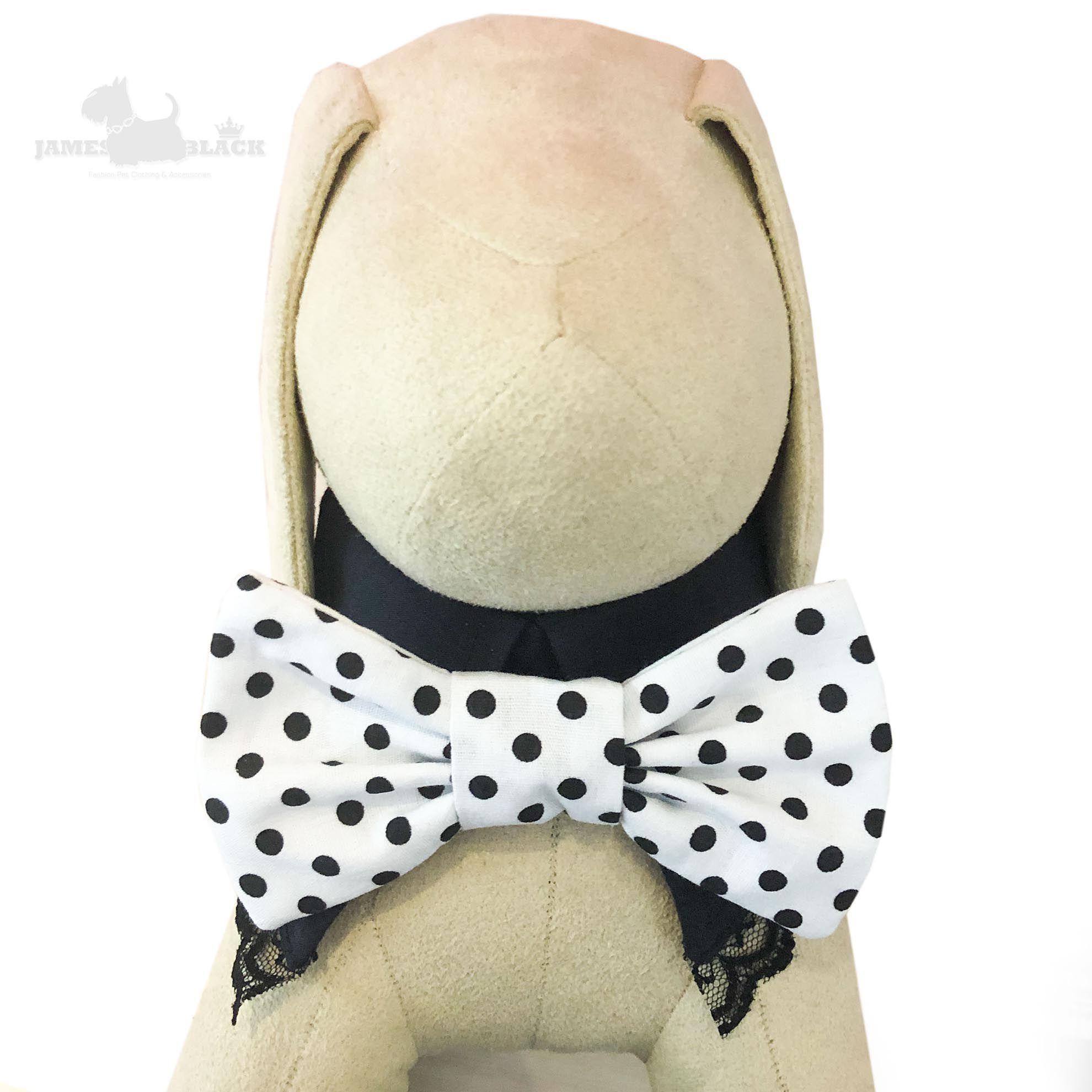 Colarinho Preto com Gravata removível branca com poá e renda preta