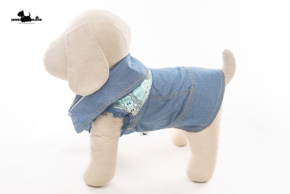 Jaqueta Jeans Pet com pesponto amarelo e detalhe nas costas azul turqueza e mangas desfiadas