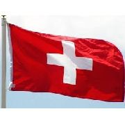Bandeira Suica 1,5mx90cm Festas Decoração