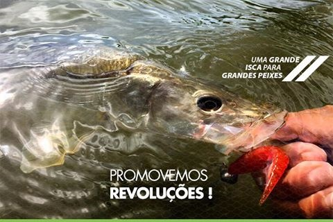 Isca Artificial Big Ones Proshad 10  - MGPesca