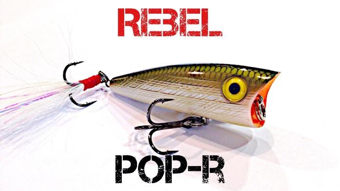 Isca Artificial Rebel Popper Pop-R P60  - MGPesca