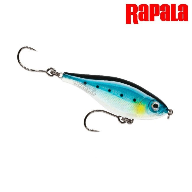 Isca Artificial Rapala Saltwater X-Rap Twitchin' Mullet 8 - SXRTM-08  - MGPesca