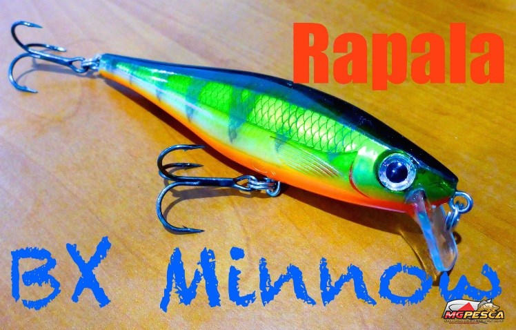 Isca Artificial Rapala BX Minnow 10 - BXM-10 - Balsa Xtreme Series  - MGPesca