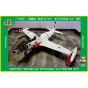 F-80C Shooting Star - 1/48 - GIIC