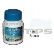 Tinta Acrílica Brilhante 519 Branco (37 ml) - Acrilex 033400519
