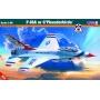 F-16A ou C Thunderbirds - 1/48 - Mistercraft G-35