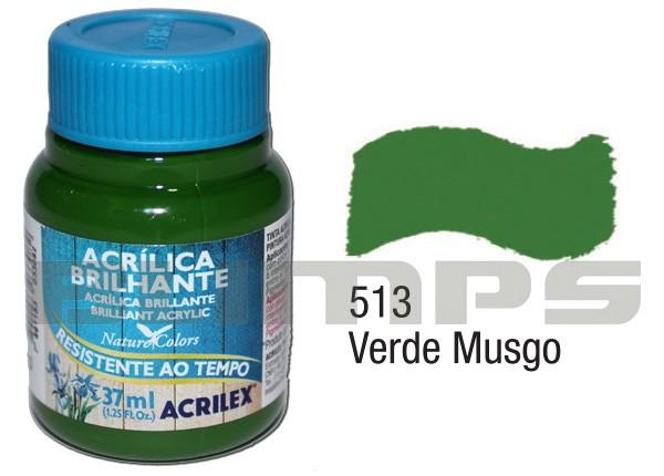 Tinta Acrílica Brilhante 513 Verde Musgo (37 ml) - Acrilex 033400513  - BLIMPS COMÉRCIO ELETRÔNICO
