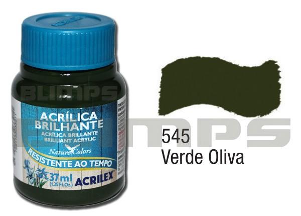 Tinta Acrílica Brilhante 545 Verde Oliva (37 ml) - Acrilex 033400545  - BLIMPS COMÉRCIO ELETRÔNICO