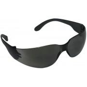 Óculos De Proteção Águia Cinza Danny