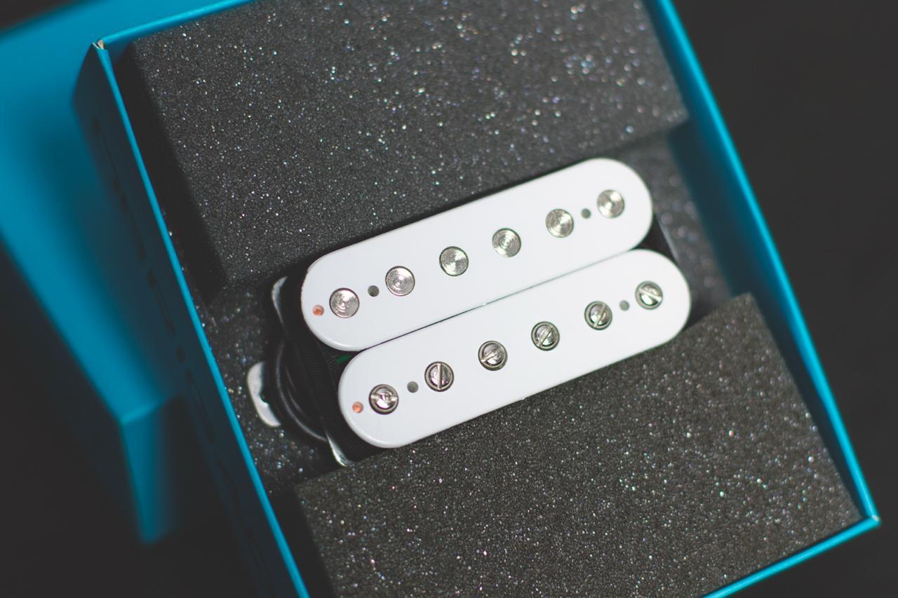 Custom 61 - BRAÇO  - Malagoli Eletrônica Ltda