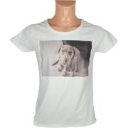 Transfer Jato de Tinta Forever InkJet Basic Camisetas Brancas