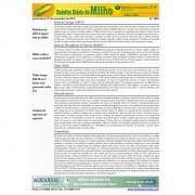 Boletim Diário de Milho - Via Email